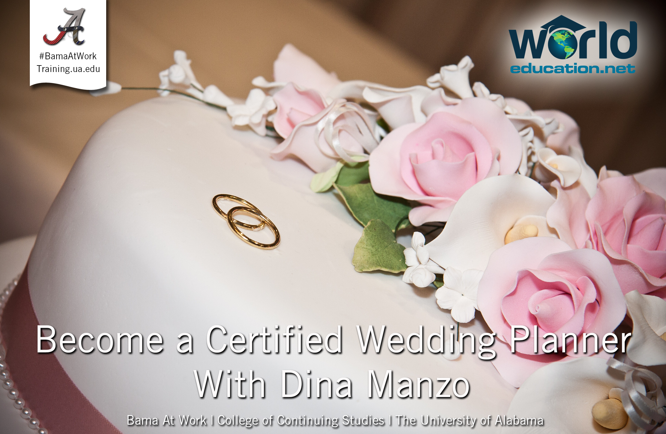Wedding Planner Certificate With Dina Manzo